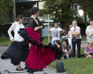 Les visites guidées de Besançon : Voyage flamenco